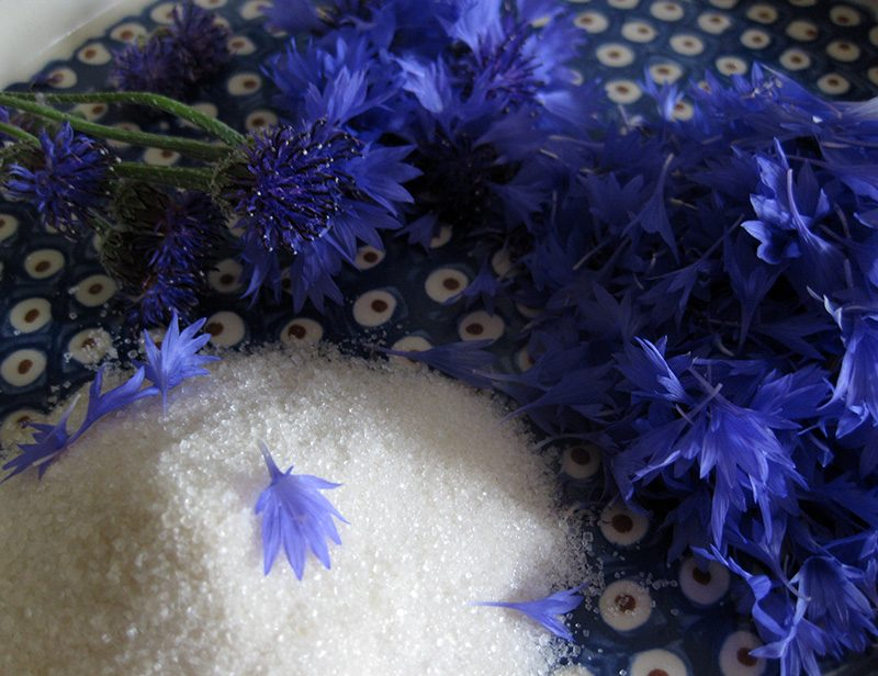 Blütenblätter von Kornblumen und Rohrzucker
