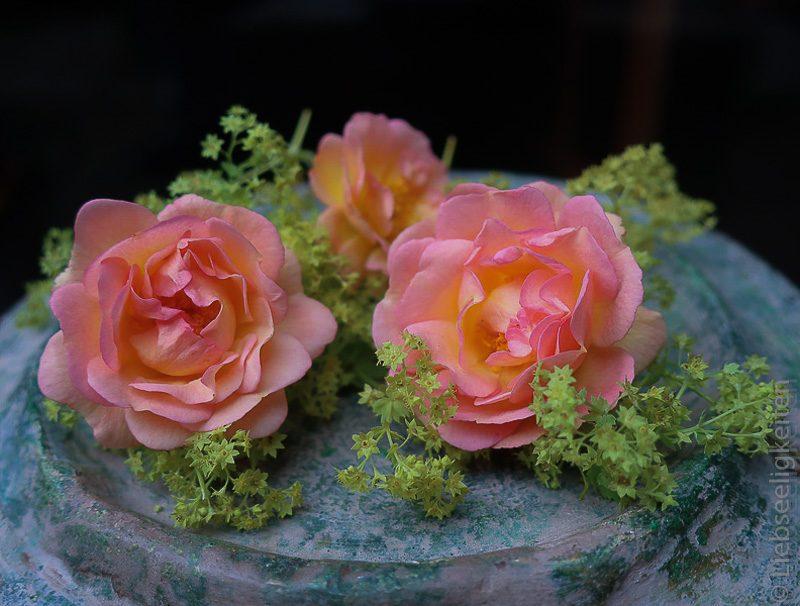 Ghislaine de Féligonde, Blüten