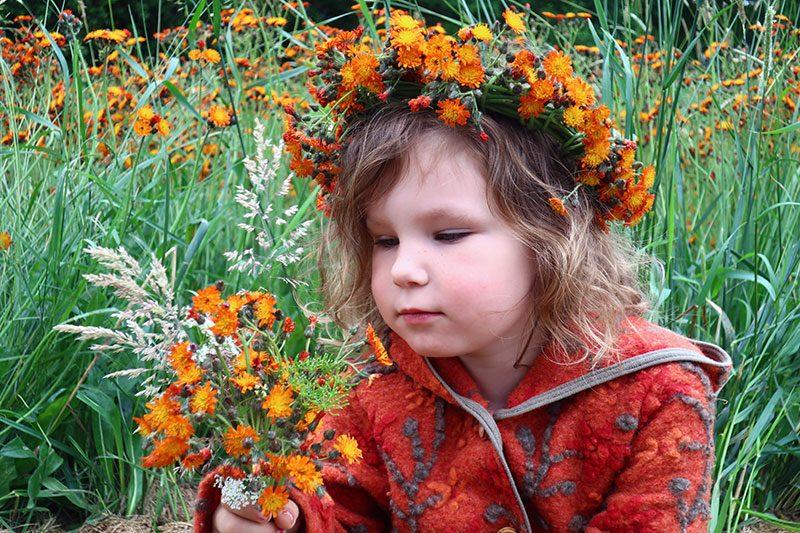 Wiese mit Habichtskraut und Kind mit Blumenkranz aus Habichtskraut
