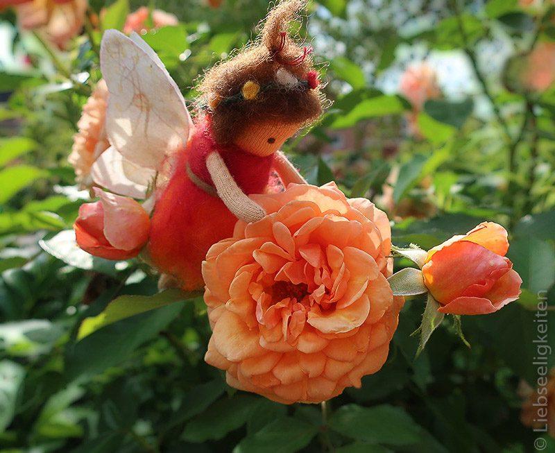 DIY Waldorf - Blumenelfe in Rosenblüte - Liebseeligkeiten Biegepuppe