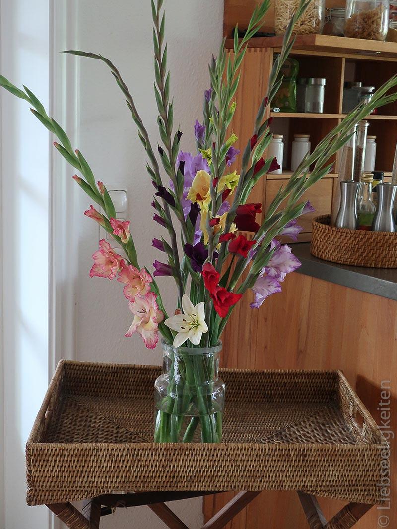 Gladiolen Vase Blumen