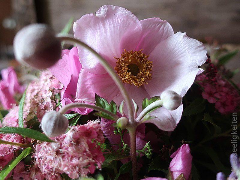 Malvenblüte im Blumenstrauß