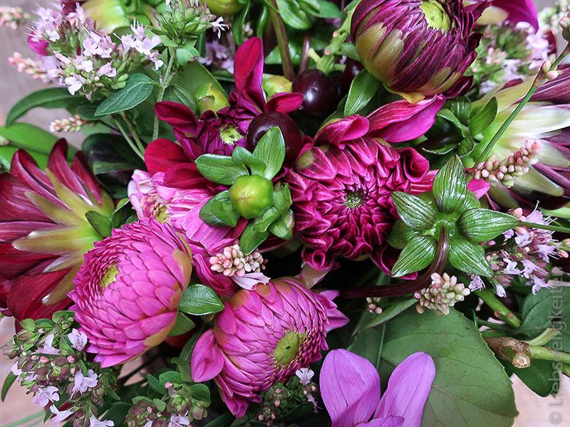 Dahlienblüten - violette - Dahlien - Blumenstrauß