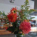 Orange Dahlien - Blumenstrauß - Herbststrauß