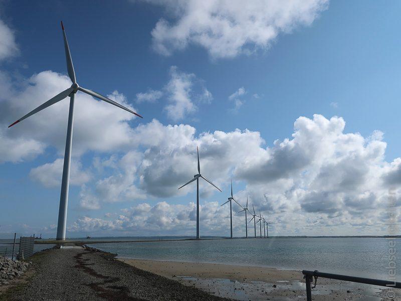 Windradpark im Limfjord Dänemark