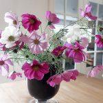 Blumenstrauß aus Cosmea - Schmuckkörbchen