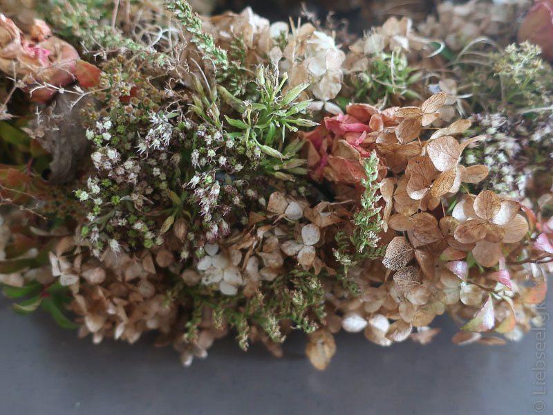 Herbstkranz - Vertrocknete Blüten - Herbst