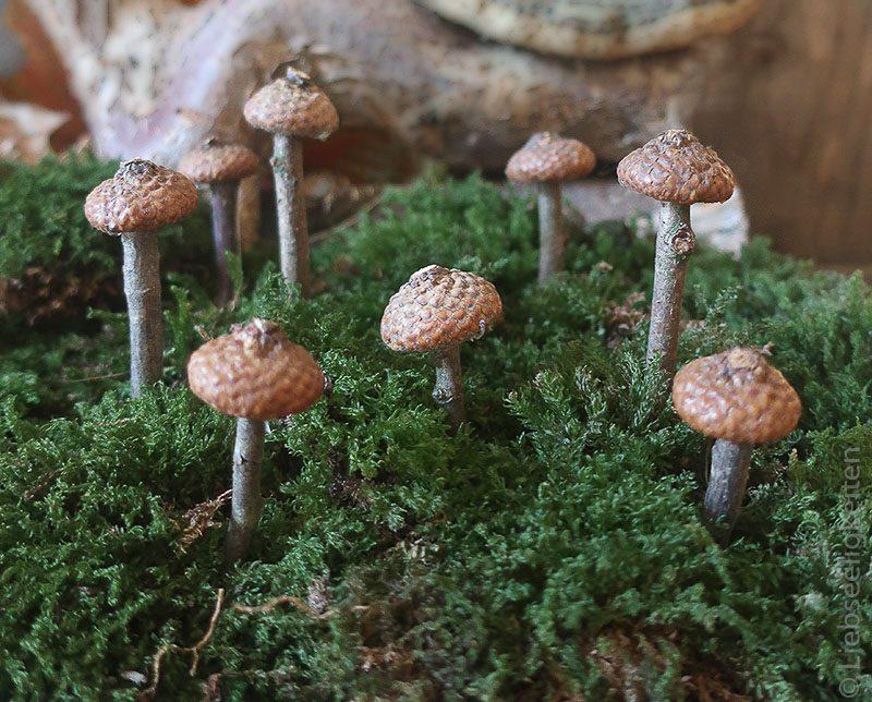Pilze aus Eichelhütchen und Stöcke - Basteln mit Naturmaterialien