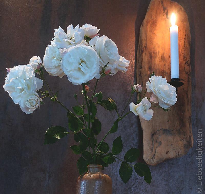 Rosenzweig - weiße Rosen - Rose Schneewittchen