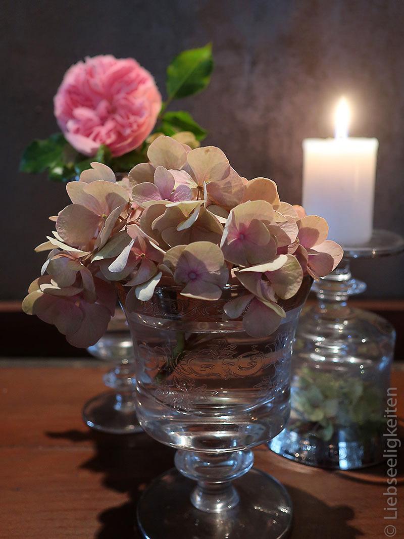 hortensienblüte im glas - kerze - rosenblüte
