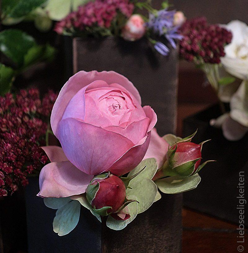 rose giardina - rosenblüte -friday-flowerday - blumendeko