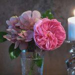 rose larissa und hortensie im glas - kerze