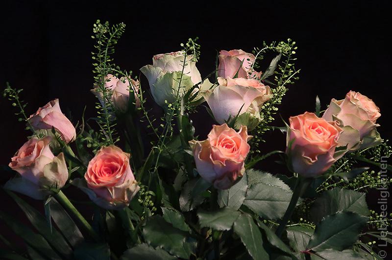 rosenstrauß - edelrosen - blumenstrauß - friday-flowerday
