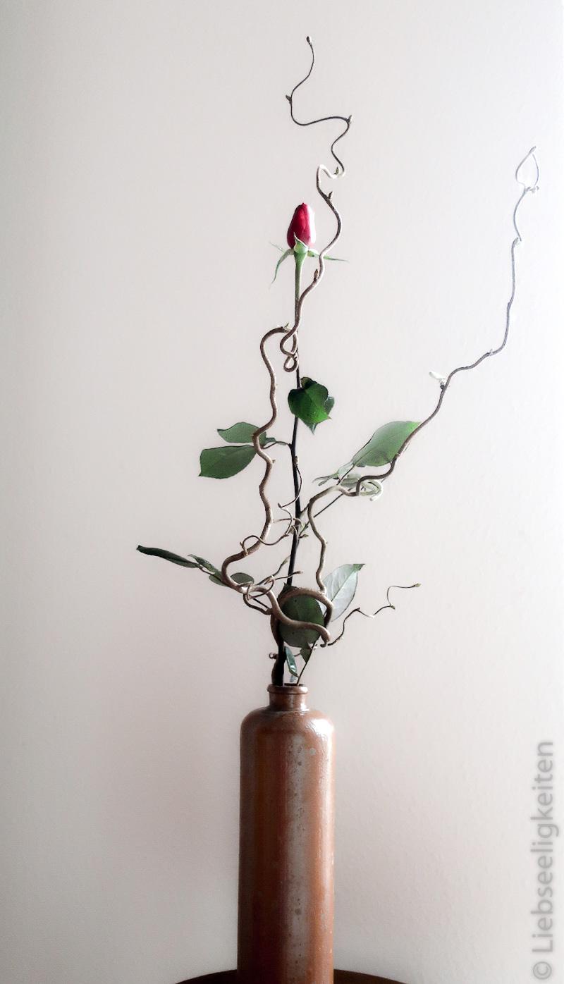 rose und ein zweig der korkenzieherhasel in Vase