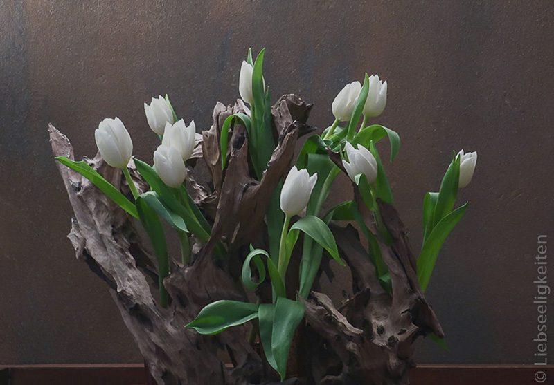 Weisse Tulpen In Einer Mangrovenwurzel Liebseeligkeiten