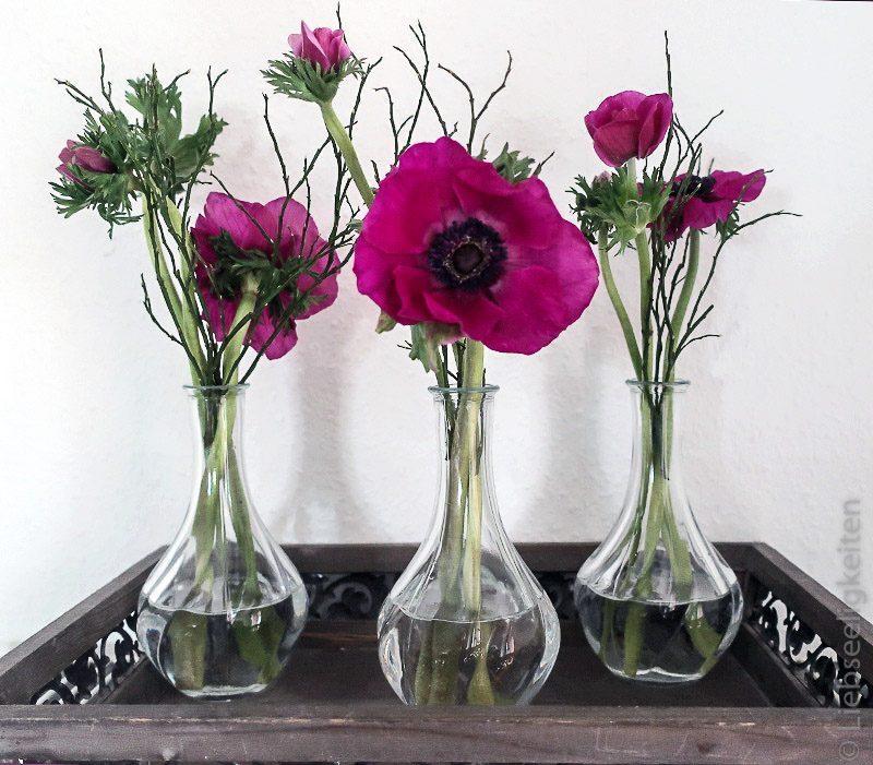 drei kleine vasen mit anemonen