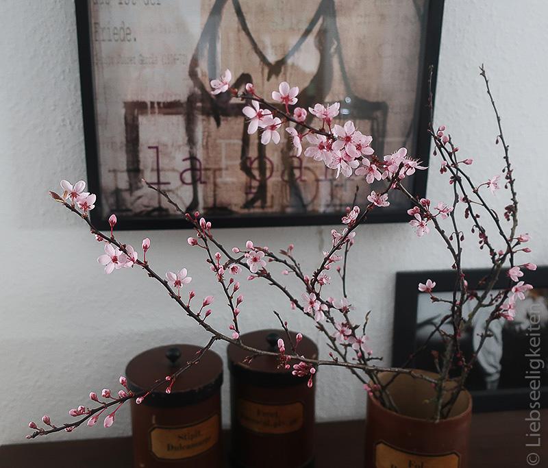 Blutpflaume in der Vase