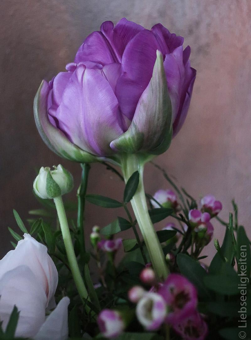 Tulpenblüte im Frühlingsstrauß