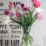 Tulpenstrauß - verschiedene Tulpen - gemischter Tulpenstrauß