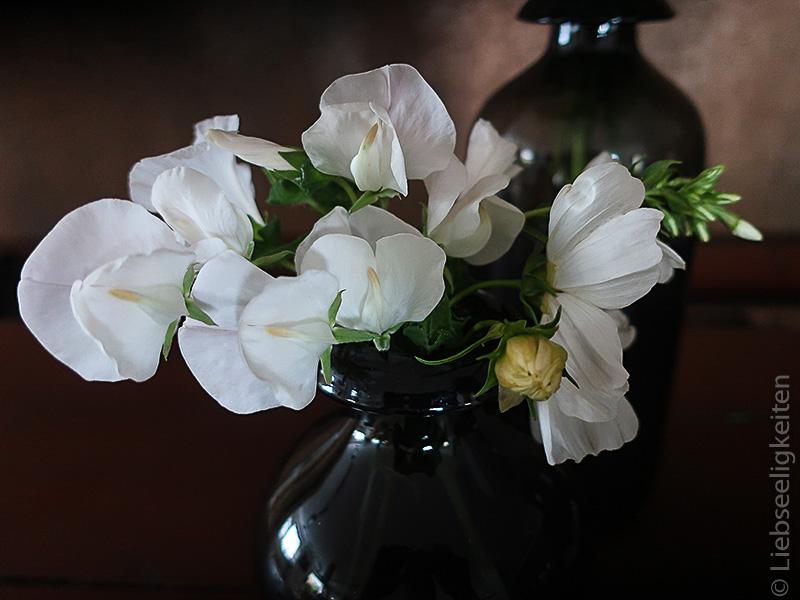 weiße Blumen - weiße Wicken und weiße Cosmea in der Vase