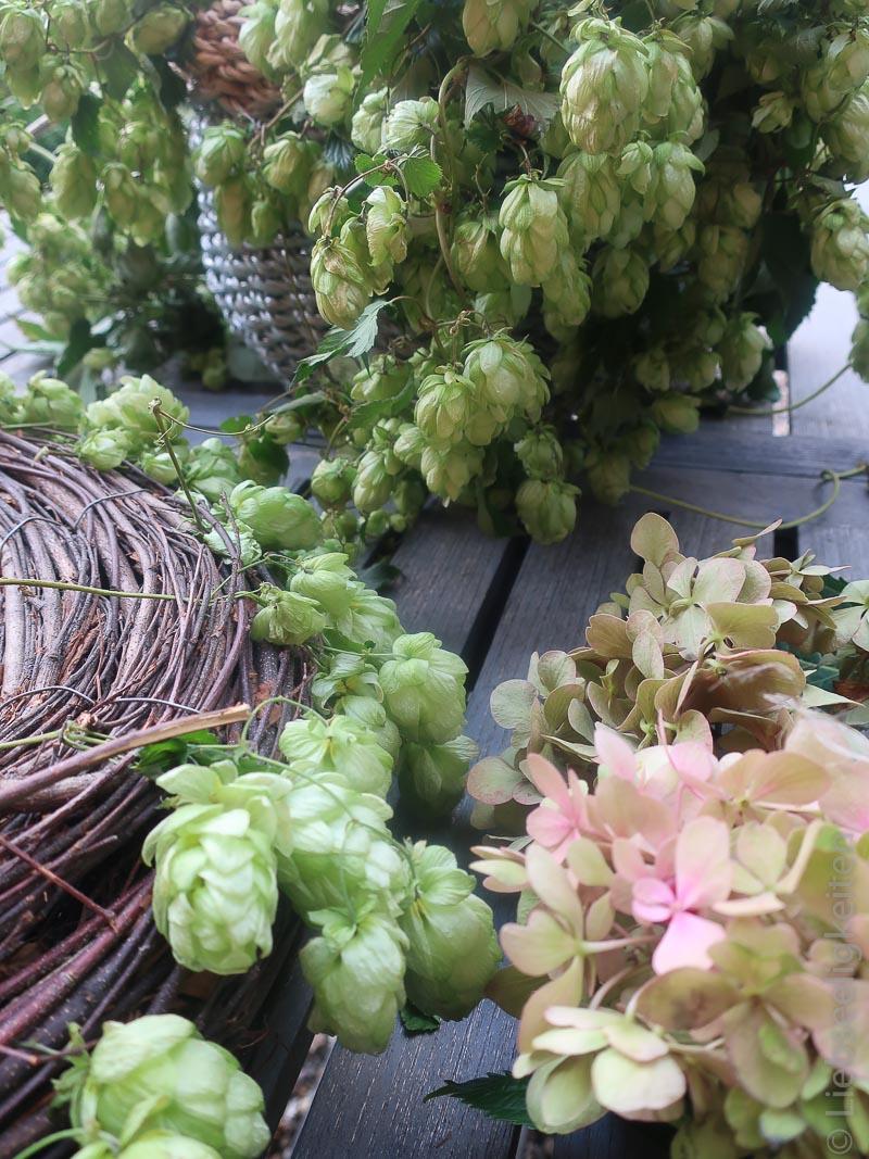 Hopfen und Hortensien für den herbstlichen Tischkranz
