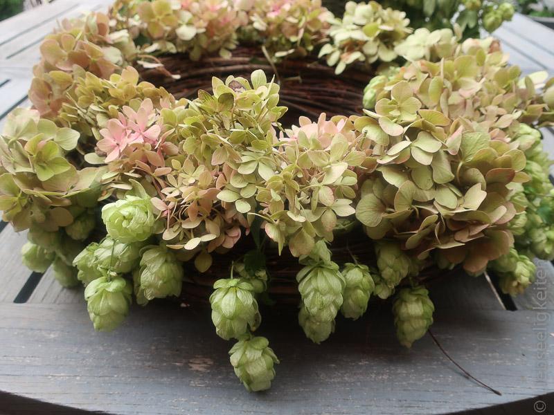 Hortensien und Hopfen gesteckt auf einen Kranz