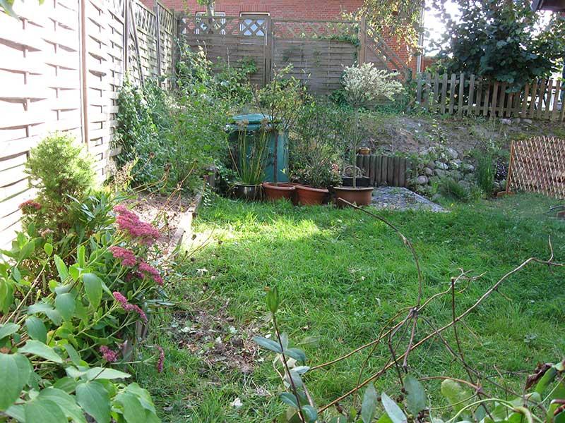 Rasenfläche hinter dem Haus