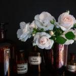 Blüten der Rose Asperin in der Vase und Apothekerfläschchen