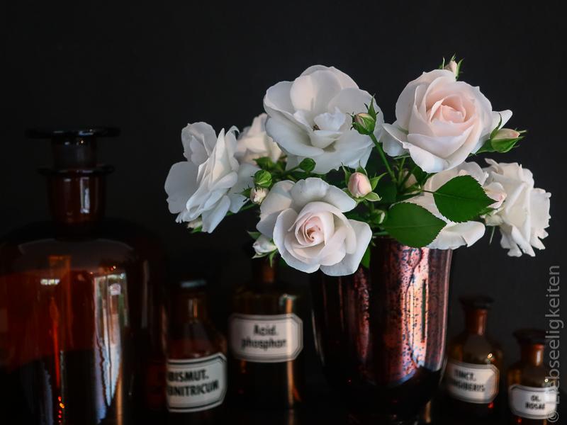 Blüten der Rose Aspirin in der Vase und Apothekerfläschchen