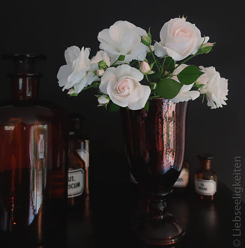 Rose Aspirin in der Vase - Apothekerflaschen