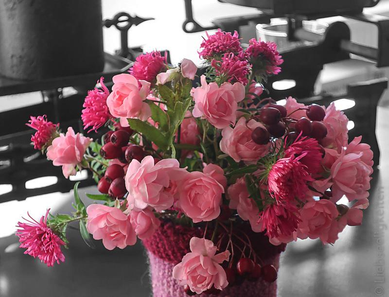 Astern, Rosen und Beeren