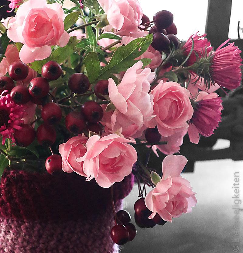 Rose The Fairy, Astern und Beeren