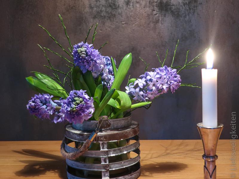 Blaue Hyazinthen - Hyazinthen in der Vase