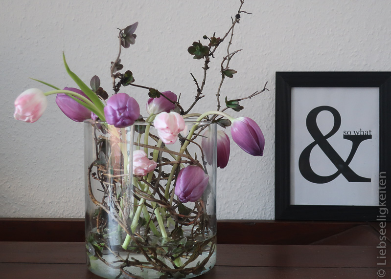 Tulpenstrauß - Tulpen ohne Blätter