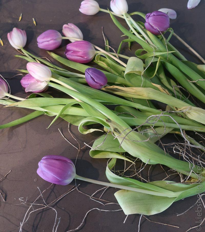 fast vertrockneter Tulpenstrauß