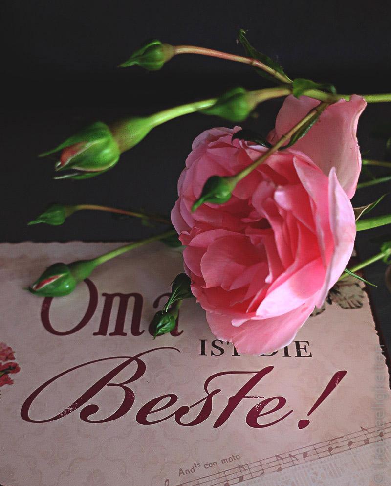 Rose - Grußkarte für Oma - Oma ist die Beste